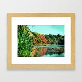 Changing Reflection Framed Art Print