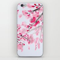 cherry blossoms iPhone & iPod Skins featuring Cherry Blossoms  by Catherine Holcombe