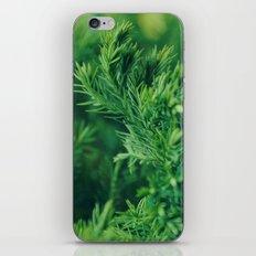 Dreaming in green iPhone & iPod Skin