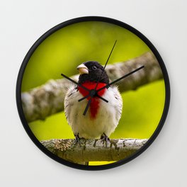 Rose-breasted Grosbeak by Reay of Light Photography Wall Clock