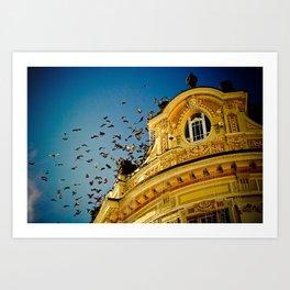 Birds on a Building, Sibiu, Romania Art Print
