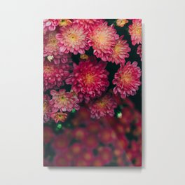 Autumn Vibes - Boho Rose Flowers Metal Print