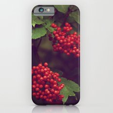 Berries iPhone 6s Slim Case