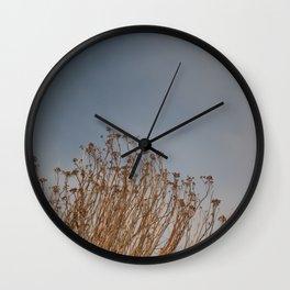 Dried plants on the coast Wall Clock