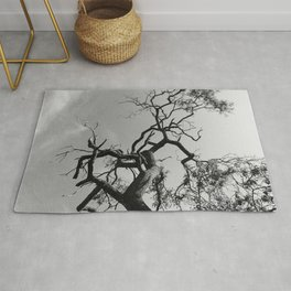 Old Spooky Bare Tree Branches Rug