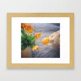 Tulip Friend Framed Art Print