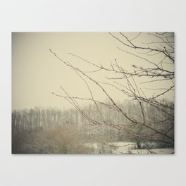 Be quiet, say nothing. Canvas Print