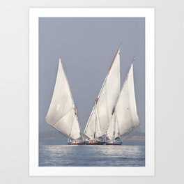 Gliding on the Nile Art Print