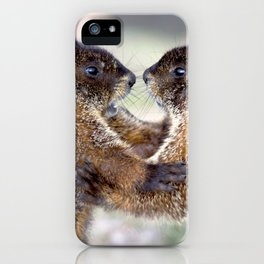 Watercolor Marmot 33, Forest Canyon Tundra, RMNP, Colorado, Sibling Rivalry iPhone Case