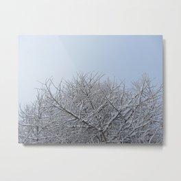 Winter Soul Metal Print
