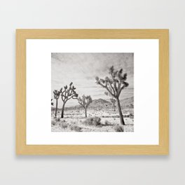 Joshua Tree Grey By CREYES Framed Art Print