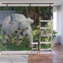 Dog by Hiro Takashima Wall Mural