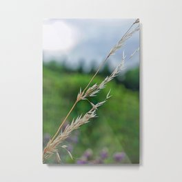 only a blade of grass Metal Print