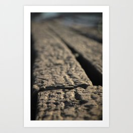 By the rowing sheds... Art Print