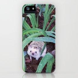 Juni Hedgehog Adventure in Plants iPhone Case