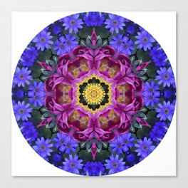 Floral finery - vivid kaleidoscope 20170321_135334 e k1 Canvas Print