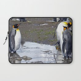 King Penguin Reflection Laptop Sleeve