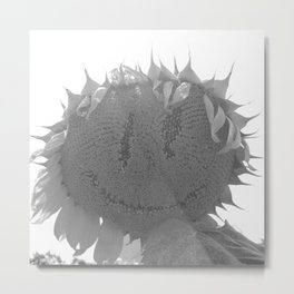 Spooky Sunflower Face Metal Print