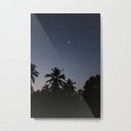 Palm night Metal Print