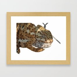 Chameleon Hanging On A Wire Fence Vector Framed Art Print