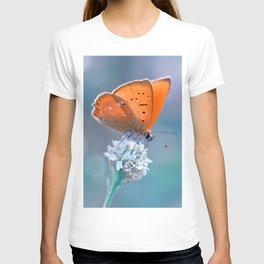 Small Copper 02 T-shirt