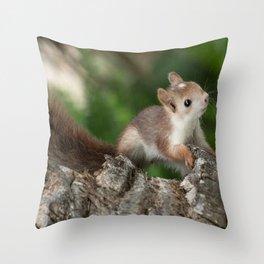 bébé écureuil  Throw Pillow
