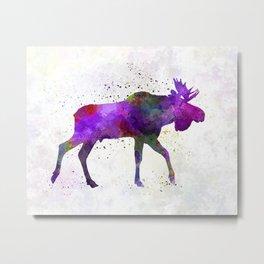 Moose 01 in watercolor Metal Print