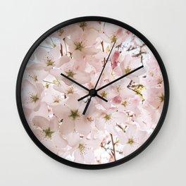 Botanical Spring Cherry Blossoms Wall Clock