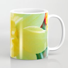 Closeup Narcissus 3 Coffee Mug