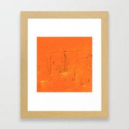 Winter Grasses Framed Art Print