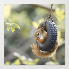 Wheeeee Goes The Squirrel Canvas Print