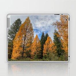 Autumn on the Mountain Laptop & iPad Skin