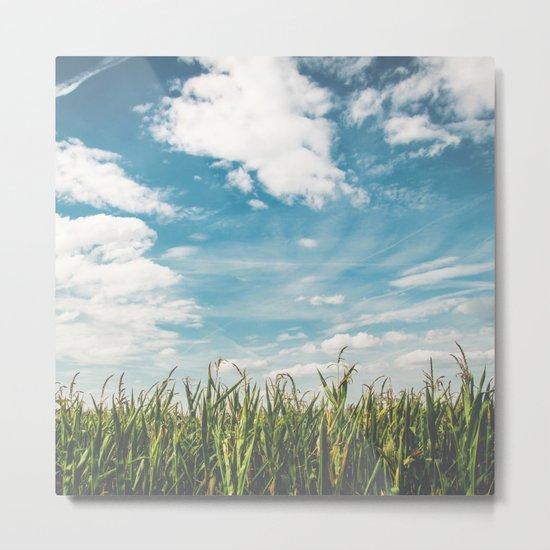 Green Field Blue Sky Metal Print