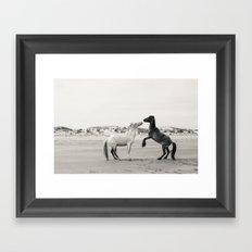 Wild Horses 4 - Black and White Framed Art Print