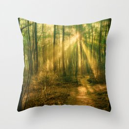 Sunlight in the Forest II Throw Pillow