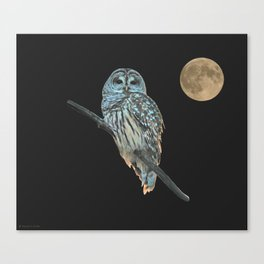 Owl, See the Moon (Barred Owl) Canvas Print