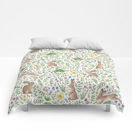 Spring Time Tortoises and Hares Comforters