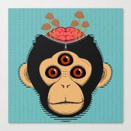 3rd Eye Chimp & Psychedelic Mushrooms Canvas Print