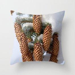 Watercolor Cone Engelmann Spruce 02, Rocky Mountain National Park, CO Throw Pillow