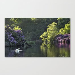Summer lake reflections Canvas Print