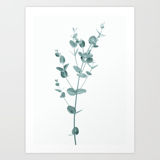 Minimal Eucalyptus by judithhoy