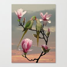 Two Parrots in Magnolia Tree Canvas Print