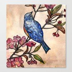 Blossom bird. Canvas Print