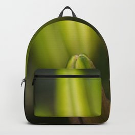 the healing Backpack