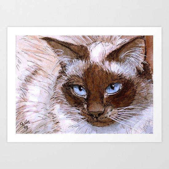 Birman Cat 561 Art Print
