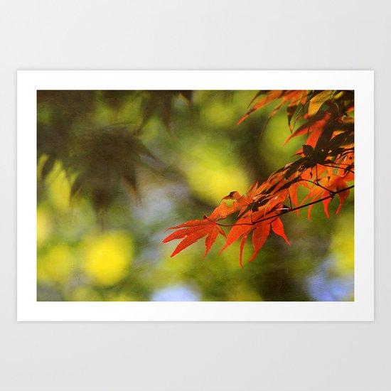 Sunlit Leaves Art Print