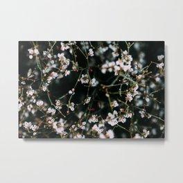 White Flowers California Wilderness Macro Metal Print