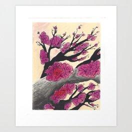 Pink Cherry Blossoms (1 of 3) Art Print