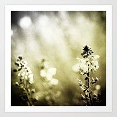 Blur Memories Art Print
