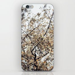 Fading autumn iPhone Skin